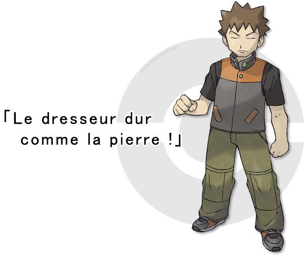Guide des champions d 39 ar ne pierre d 39 argenta - Pierre feu pokemon noir ...